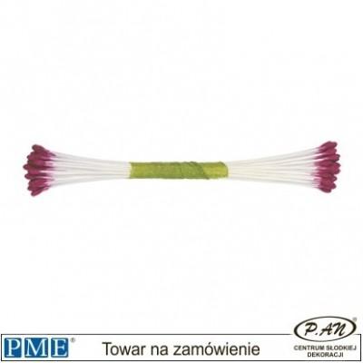 Pręciki-liliowy-50 szt.-PME_STAM02L
