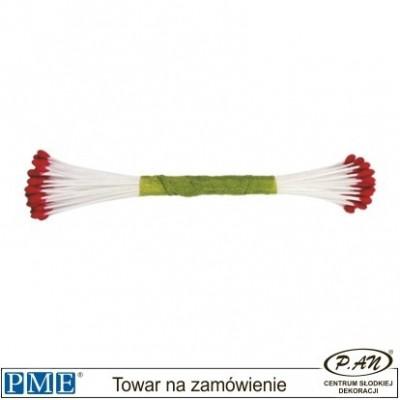 Flower Centres-lime-large-50pcs-PME_STAM04LG