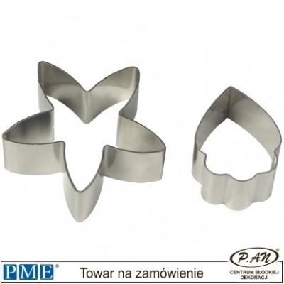 Cymbidium Orchid-set of 2-PME_CY221