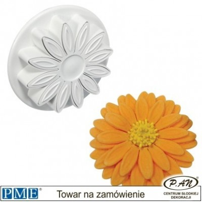 Marguerite- set of 4-PME_DA634