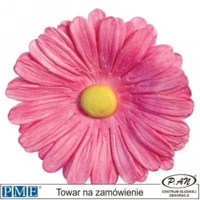 Plastic cutter-flower &Leaf-set of 7-PME_103FF008
