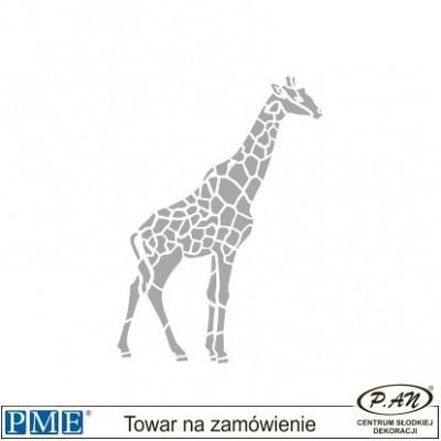Stencils-Rhino- 2.44x4.65''- PME_SA8