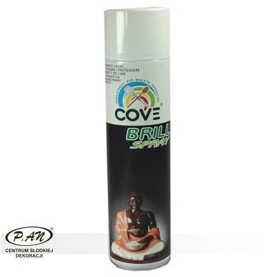 NEW!Food spray varnish