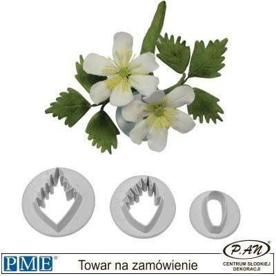 Goryczka- 2 szt. - PME_TG453