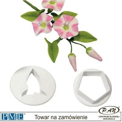Zawilec- 3 szt. - PME_WA454